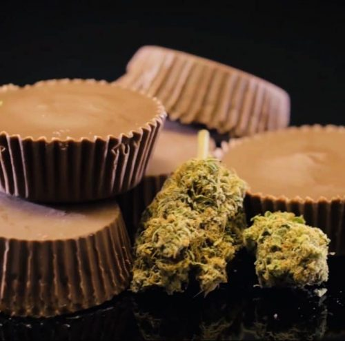 Cannabis chocolate peanut butter cups with caramel sauce