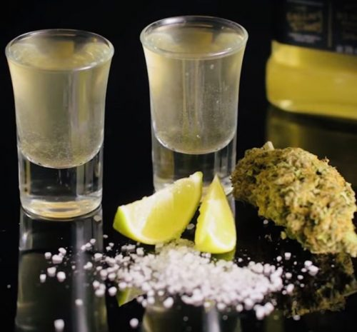 Cannabis shot glasses filled with infused tequila