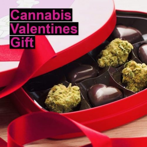 Cannabis valentines chocolates as DIY gift recipe