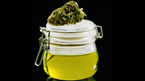Mason jar filled with homemade CBD oil from raw flower