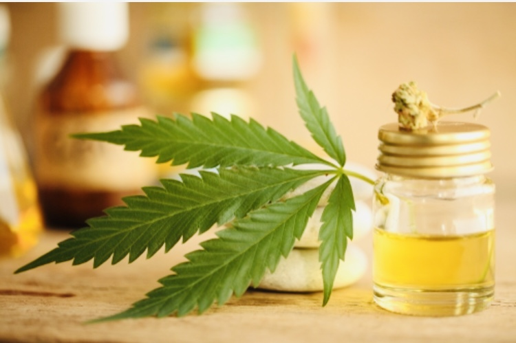Cannabis Massage Oil: THC/CBD Infused Oil For Muscle Pain Relief