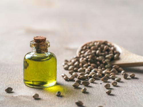 CBD Hemp Extract and Hemp Seeds, cannabis extract, CBD Seeds