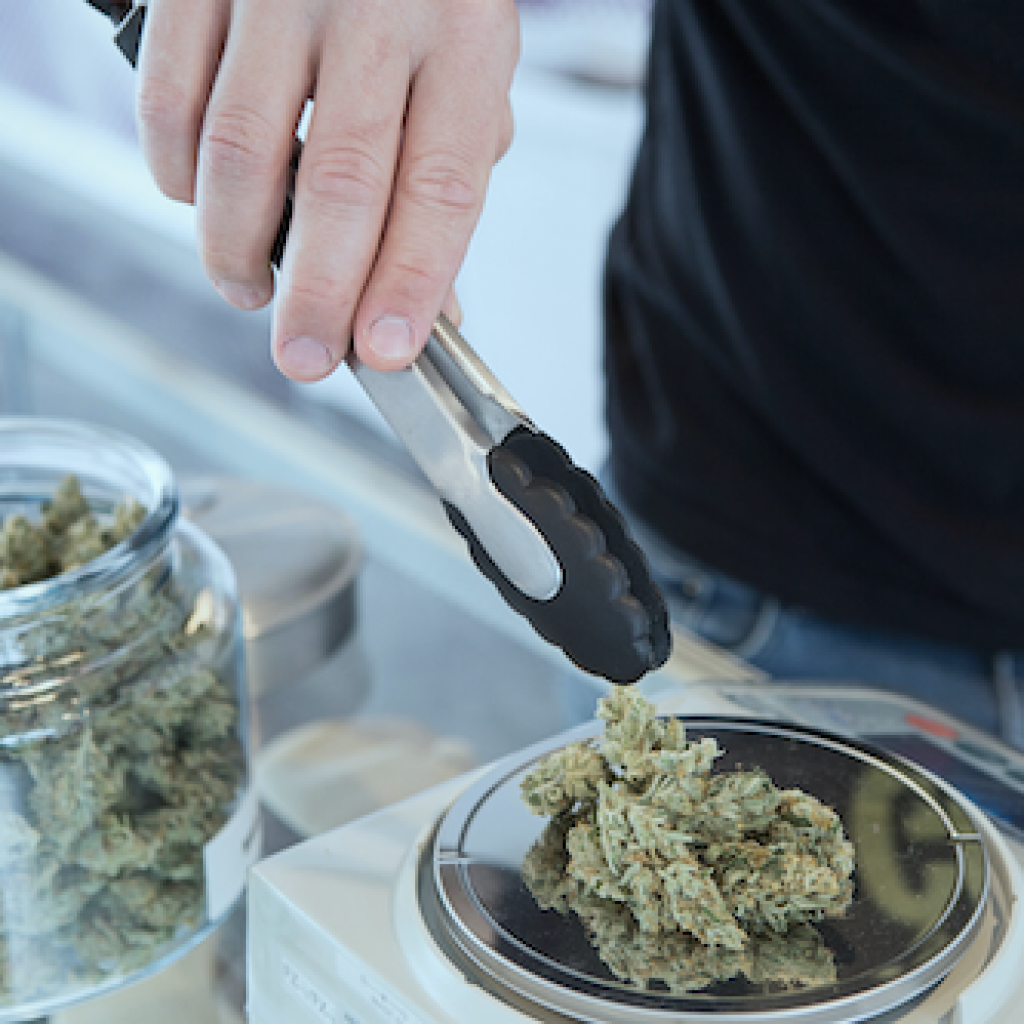 budtender for weed wedding, cannabis representative, weed expert