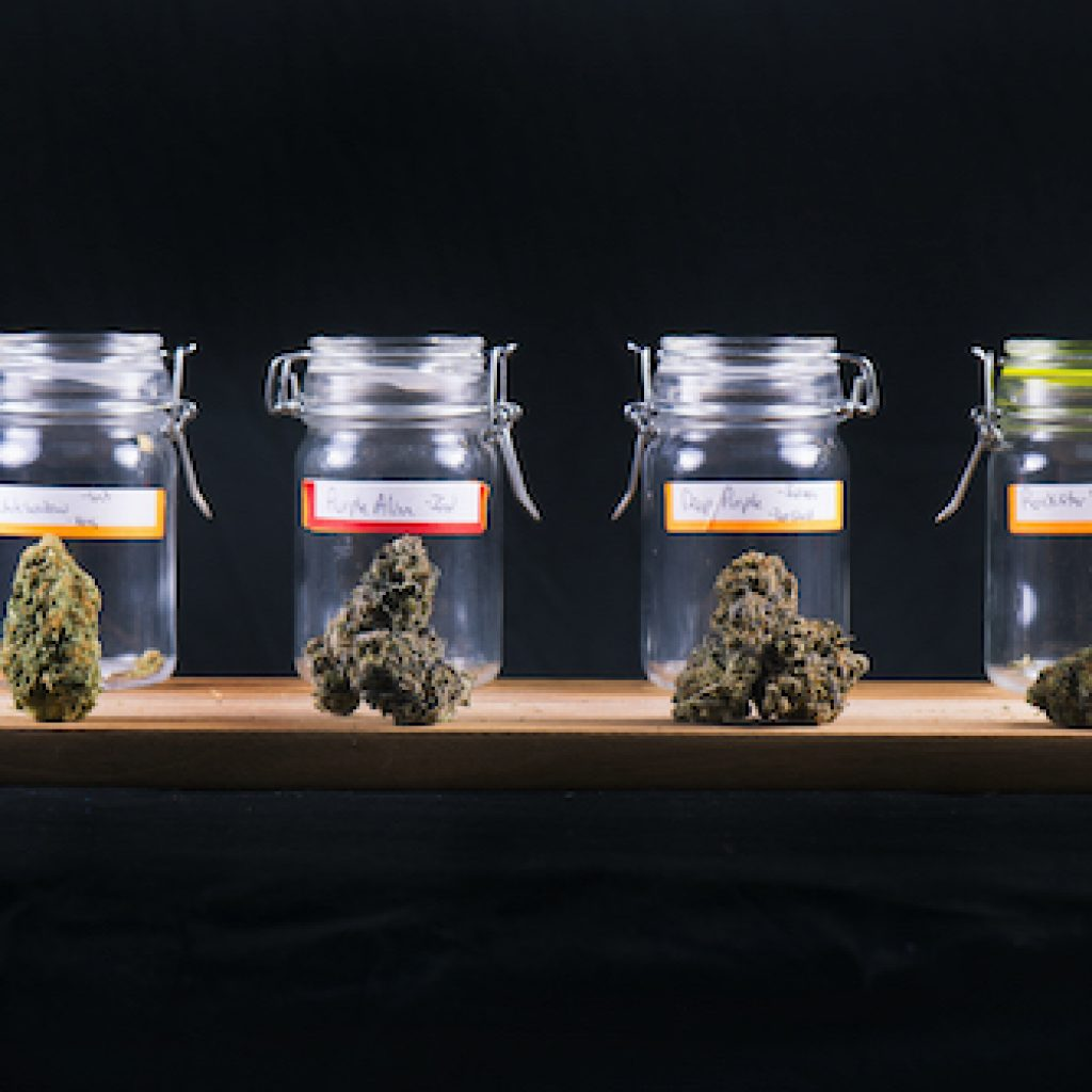 Four jars that contain cannabis.