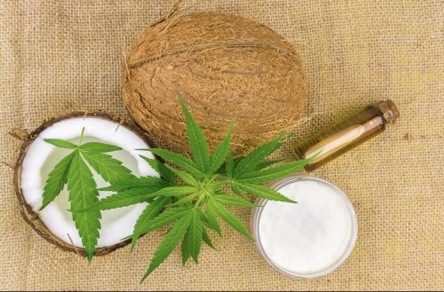 Cannabis topical body lotion recipe with THC coconut oil