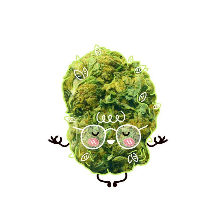 cannabis bud practicing weed yoga