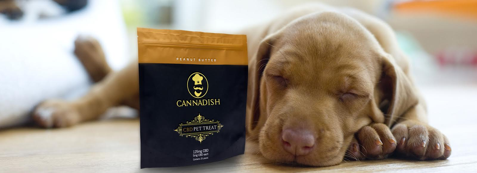 Cbd dog treats for your pet