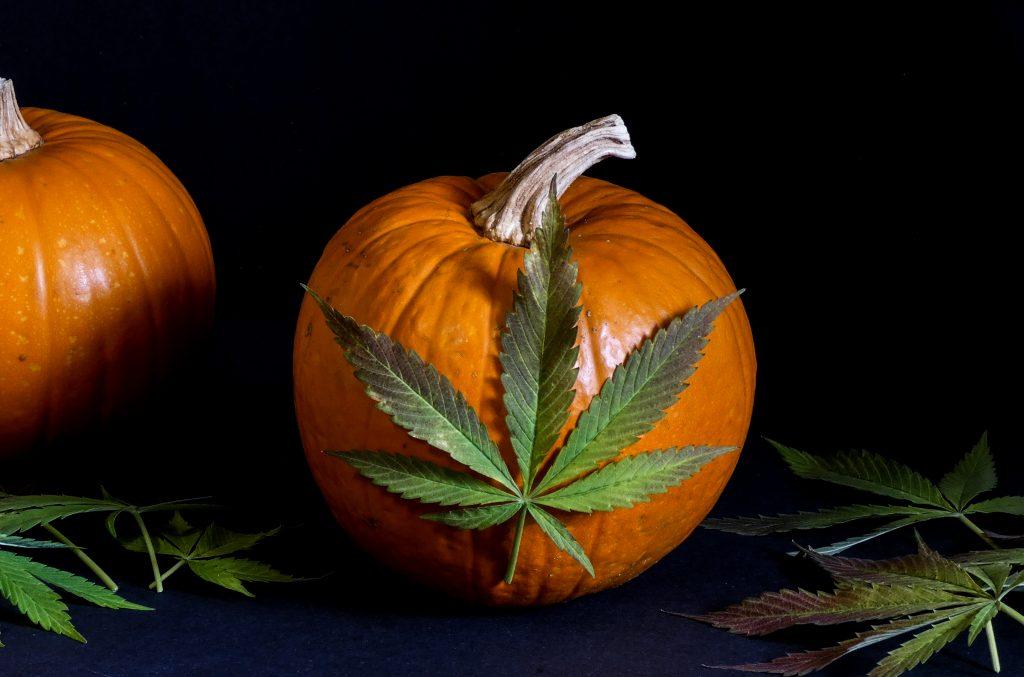 Halloween-Weed-Pumpkins